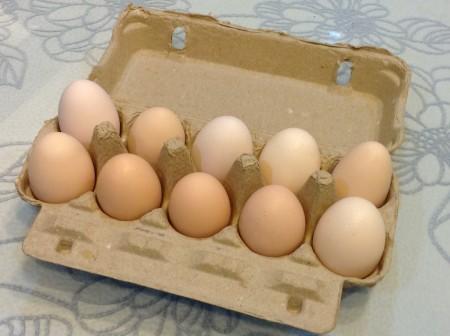 【多采擷嚴選】超跑土雞蛋 /10顆裝
